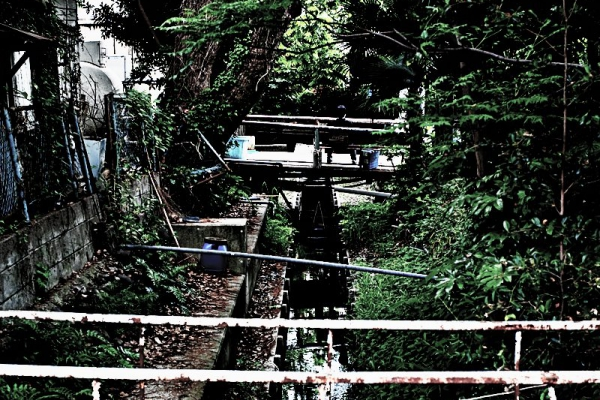 [写真]柳川市02